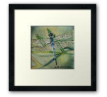 Little Blue Dragonfly Framed Print