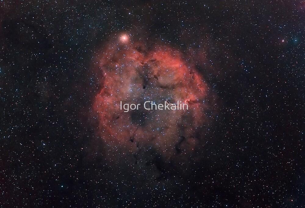 Mu Cephei supergiant star, and IC1396 emission nebula. by Igor Chekalin