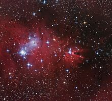 """Cone"" and ""Fox Fur"" nebulas, ""Christmas Tree"" star Cluster by Igor Chekalin"