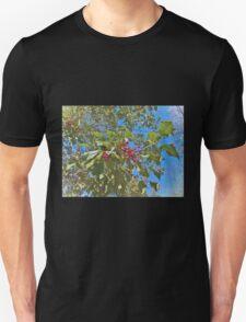 Summer Holly T-Shirt