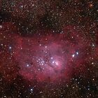 Lagoon (M8) nebula in Sagittarius constellation. by Igor Chekalin