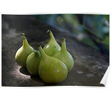 Green Figs Poster