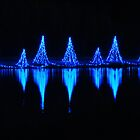 Blue Light Reflections by Rodney Williams
