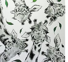 Menagerie by Sally Ford