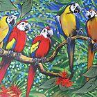 Rainforest Rhythm by Sally Ford