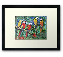Rainforest Rhythm Framed Print