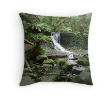 Horseshoe Falls, Mt Field National Park, Tasmania Throw Pillow