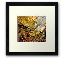 Nature's Art Canvas II Framed Print