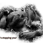 What's stopping you? by Deanna Roberts Think in Pictures