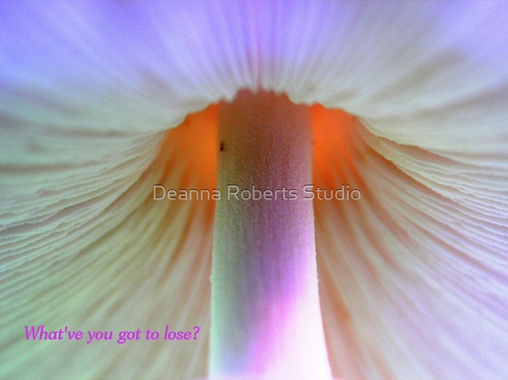 What have you got to lose? by Deanna Roberts Think in Pictures
