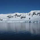 Antarctic Reflection by Craig Baron