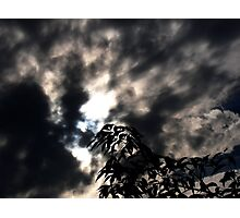 i see the sun,do you? Photographic Print