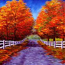 New England Autumn Drive by sesillie