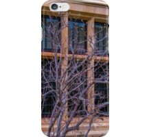 Stone and glass iPhone Case/Skin