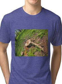 Stump of the cut tree on the edge of the forest Tri-blend T-Shirt