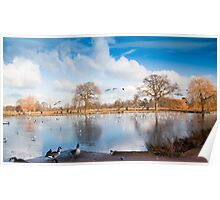 Bushey Park Lake in Winter Poster