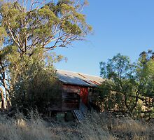old sheds,mount prior winery,panorama by dmaxwell