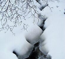 Through the Cold by Ritva Ikonen