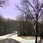 FIRST SNOW 2010 by Spiritinme