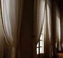 curtains versailles by rapsag