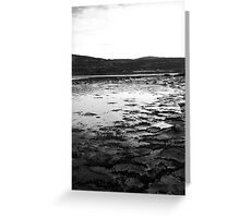 Ice Sheets Greeting Card