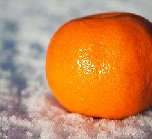 Orange on snow by Squawk