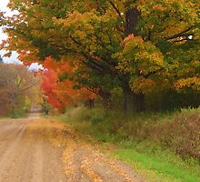 Autumn on a country lane by lam20