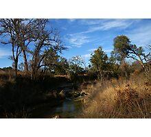 Cow Creek Photographic Print
