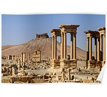 Palmyra.... now the madness of  ignorant despotes returns  Poster
