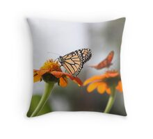 Butterfly Cafe Throw Pillow