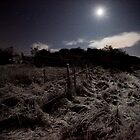 Night TIme Walk by rosiemaddra