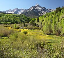 Spring Greens by Eric Glaser