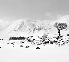 Black Mount - This Snow Covered Land  by Kevin Skinner