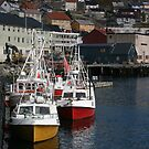 Honningsvåg Harbour by ellismorleyphto