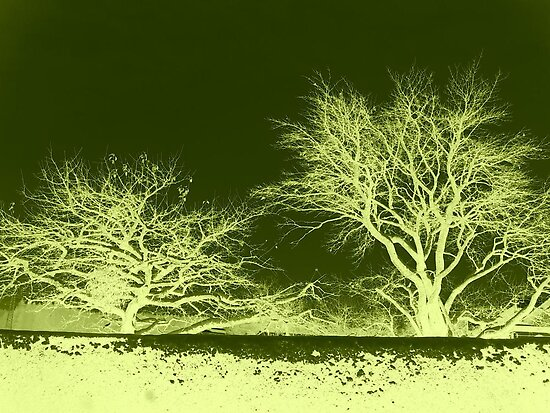 Abstract Trees in Lime & Olive by ©The Creative  Minds