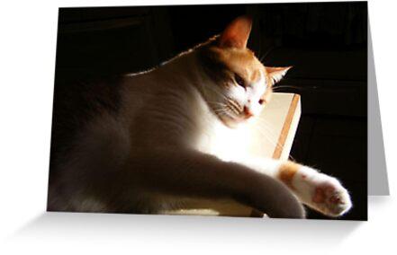 I'm Sunbathing! by Marie Sharp