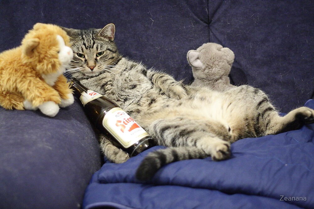 Just me, my beer, and my pussies...  by Zeanana
