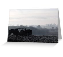 cows feeding in the mist Greeting Card
