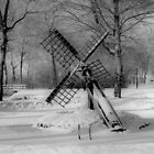 WINTER SCENE IN B&W HDR by Johan  Nijenhuis
