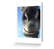 up close and personal - in your face and nosey. Greeting Card