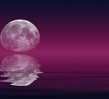 Purple Moon by PhotoWorks