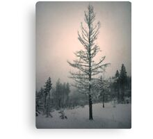 Snow and the Remnants of the Fire Canvas Print