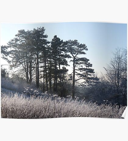 Frosty Hillside Poster
