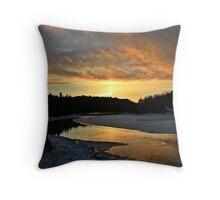 Ontario winter 2 Throw Pillow