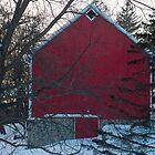 Stone foundation Red Barn Pine Tree by Diane Trummer Sullivan