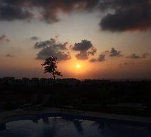 Lone Tree at sunset by arekkusu
