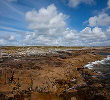 moyrus,connemara,galway by JAMES WHELAN