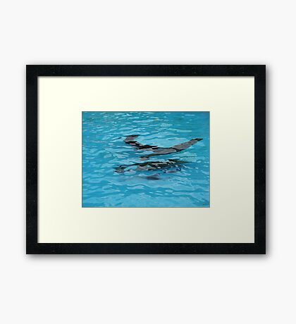 Under water: swimming Framed Print