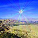 Coachilla Valley Sun by Tori Snow