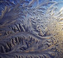Winter's fingerprints on my window (4) by Explosive